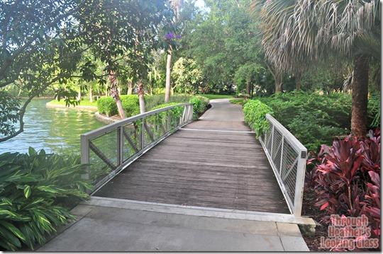 universal bridge