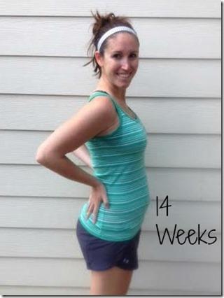 14weeks bump