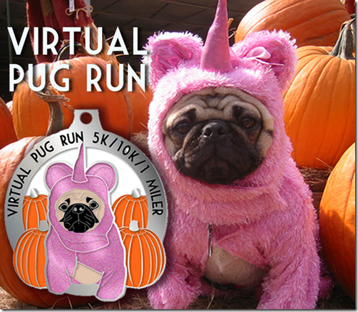 The-Virtual-Pug-Run