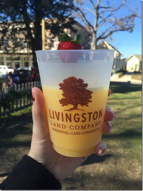 livingston mimosa